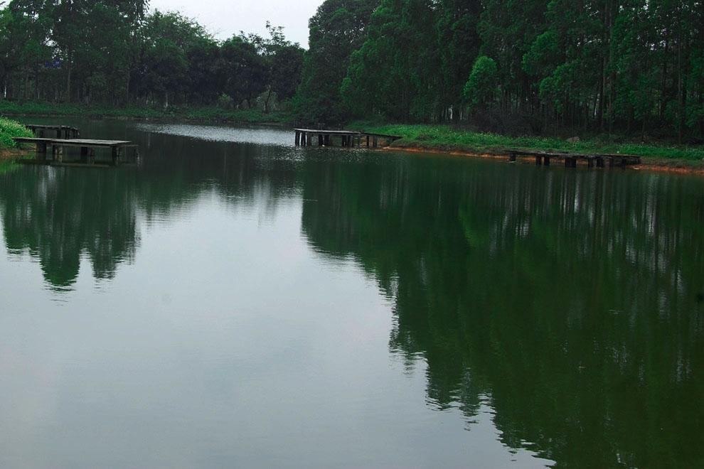 一个小湖,有几个破板子,又不让钓鱼,只能给文艺青年怀疑人生用的