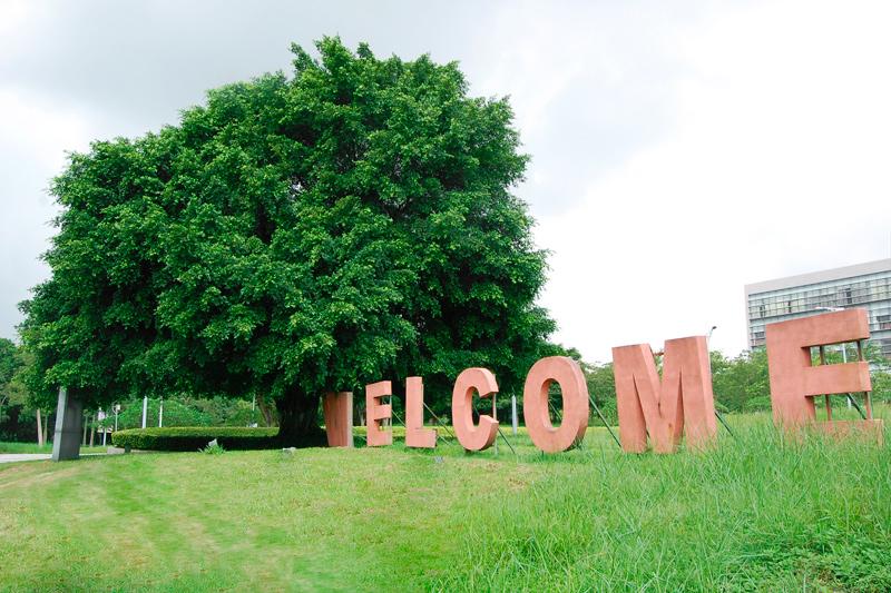 巨大的榕树加上welcome显得很有现代气息