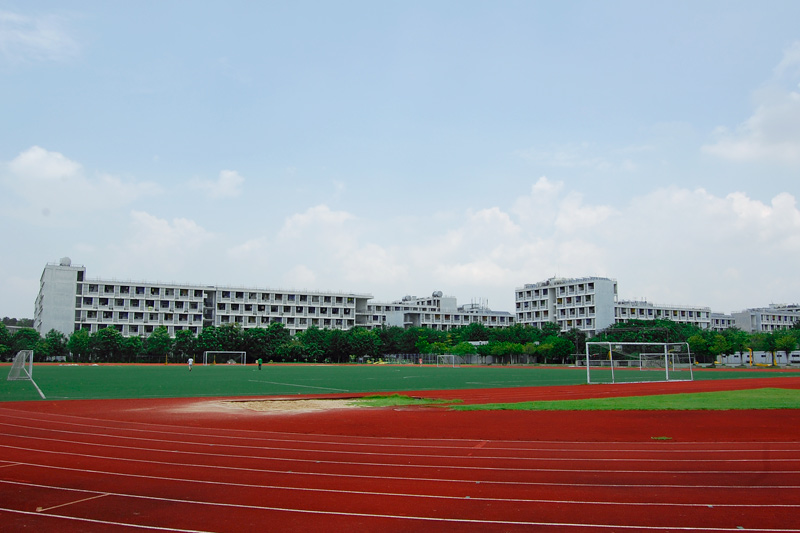 假草体育场